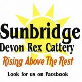 sunbridge.devonrex